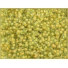 Seedbead 8/0 Green And Yellow Color Lined Terra Color